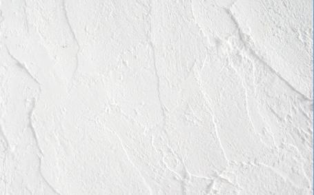 自然素材の「珪藻土」